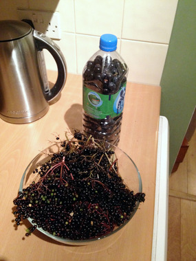 A bottle and bowl of elderberries